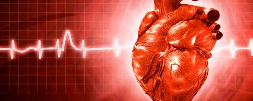 Heart Disease and Dental Hygiene